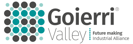 Goierri Valley - Future Making · Industrial Alliance